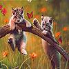 Puzzle- Hrající si koťátk…