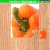 Ovoce a zelenina 5