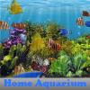 Domácí akvárium
