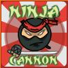 Ninja kanón